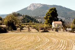 IMG_2202 (jaro-es) Tags: landschaft landscape campo feld field canon costablanca eos70d españa spanien spain spanelsko nature natura natur haus house casa