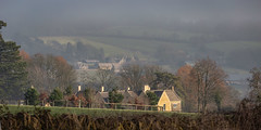 Misty Morning In The Cotswolds (Geraldine Curtis) Tags: cotswolds rural scene kite bird birdofprey gloucestershire upperslaughter