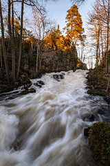 Risbohult (jarnasen) Tags: fuji fujinon xt20 xf1024mmf4 wideangle tripod longexposure hdr flow nature melting spring water creek sunset evening risbohult hindås sweden sverige scandinavia geo geotag gallery copyright järnåsen jarnasen forest trees spray moss light shadows