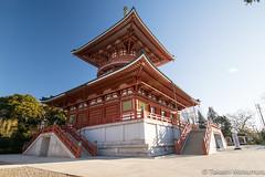 Naritasan Shinshoji Temple (takashi_matsumura) Tags: naritasan shinshoji temple narita chiba japan ngc nikon d5300 architecture afp dx nikkor 1020mm f4556g vr