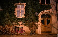 Midnight Sun (// Kuki //) Tags: street bike door night munichnight canoneos350d canon 350d efs18135mm