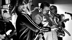 BNP_6259_NXi_01 (MartinGene) Tags: majestics rochester beer three heads music concert show reggae club stage 1750mmf28exdcoshsm 1750mm f28 ex dc os hsm brewery live high iso saxophone trombone blackandwhite