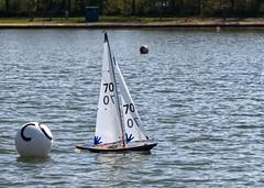 KP1480760a (Mike Millard) Tags: pooleradioyachtclub 8m poolepark