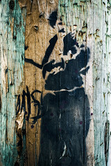 The Woman Whose Hat Blew Away in the Wind (Katrina Wright) Tags: dsc3267edit2 wood texture grain paint weathered worn black pareidolia woman hat wind windy sliderssunday hss