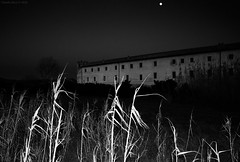 "Santa Severa ""Horror Movie"", Central Italy (Claudio_R_1973) Tags: horror thriller mistery black noir weird dramatic scary blackandwhite white bw grass moon night palace building landscape santasevera centralitaly monochrome oldstyle filmlike"