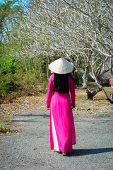 An Asian walking on rural road in Vietnam (phuong.sg@gmail.com) Tags: aodai asia asian attractive beautiful beauty bouquet charming china clothes culture dress fashion female forest girl hanoi happy hat hochiminh hoian lady lifestyle national nature outdoors park path people person portrait posing pretty road saigon silk student style sweet tradition vietnamese walking woman young
