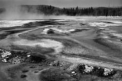 Yellowstone Flow (chrislon28) Tags: yellowstone hotspring nationalpark yellowstonenationpark kodak plusx125 plusx ftb landscape canonfilm film 35mm blackandwhite fd