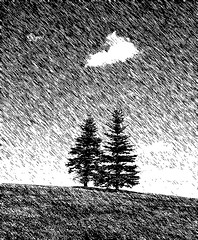 Two trees on a hilltop (EOSXTi) Tags: photoart trees visualart