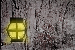 Snowy Morning at the Lake (Mr_Camera71) Tags: ozarks missouri snow lantern aedimages canon