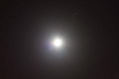 moon & uranus / @ 55 mm / 2019-01-14 (astrofreak81) Tags: crescentmoon halfmoon halbmond moon luna mond planet uranus stars tree light night sky dark konjunktion konstellation dresden 20190114 sylviomüller sylvio müller astrofreak81