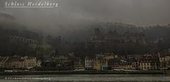 Schloss Heidelberg (Fotomanufaktur.lb) Tags: heidelberg schloss neckar nebel fog schölkopf schoelkopf deutschland