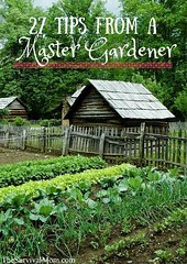 27 Tips from a Master Gardener: (CoolHomeStyling) Tags: home decor design styling interior