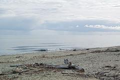 Mer-calme (RS...) Tags: corse mer plage sea beach hiver winter nikon1 v2