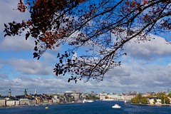 Citywalk (a_nin) Tags: travel europe stockholm city citytrip sweden outside water perspective tree autumn