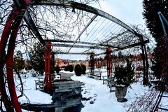 Arboretum in Snow (pmorris73) Tags: arboretum pennstateuniversity statecollege pennsylvania 1cc0319 2cc0319 3cc0419 4cc0719 5cc1319 6cc2019