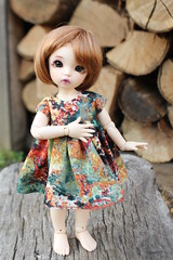 Happy Trees (AluminumDryad) Tags: fairyland littlefee ltf ante tinybjd bjd balljointeddoll doll resin wood forest woodpile logs autumn fallfoliage