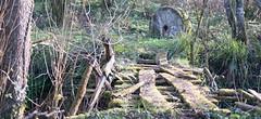 puente / bridge, fonfría (Roger S 09) Tags: asturias cabranes villanueva fonfría molino puente piedradelmolino bridge millstone mill