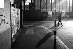 lowlight scene (gato-gato-gato) Tags: apsc europa europe fuji fujifilmx100f schweiz street streetphotography switzerland x100f zurich zürich autofocus flickr gatogatogato pocketcam pointandshoot streettogs wwwgatogatogatoch black white schwarz weiss bw blanco negro monochrom monochrome blanc noir strasse strase onthestreets streetpic streetphotographer mensch person human pedestrian fussgänger fusgänger passant suisse svizzera sviss zwitserland isviçre zuerich zurigo zueri fujifilm fujix x100 x100p digital