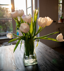 Kitchen tulips (bohelsted) Tags: lumix gm5 summilux 15mm leicadg flowers vase tulips kitchen table flare