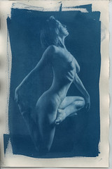 Cyanotype005.jpg (Iain Compton) Tags: sexy contactprint portrait cyanotype monochrome nude lingerie boudoir studio model paperprint girl beauty alternativeprocess