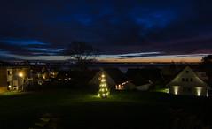 The last 2018 Christmas tree show ... :-) (frankmh) Tags: landscape nightphotography christmastree öresund hittarp skåne denmark