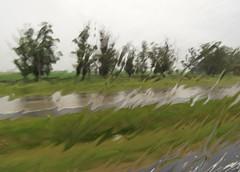 Acuarela natural (carlos_ar2000) Tags: lluvia rain agua water vidrio glass distorsion distortion dof naturaleza nature surreal abstracto abstract sanjose uruguay