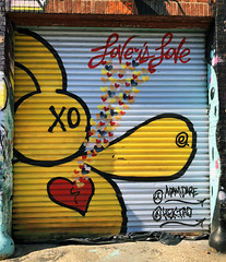 Love is Life by Adam Dare (wiredforlego) Tags: graffiti mural streetart urbanart aerosolart publicart brooklyn williamsburg newyork nyc ny adamdare shutter