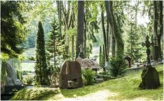 154- OTRO RINCÓN DEL CEMENTERIO DE ANTAKALNIS - VILNIUS - LITUANIA - (--MARCO POLO--) Tags: cementerios ciudades curiosidades rincones