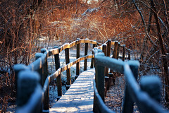 Passage (Pásztor András) Tags: nature winter snow white blue red sunset sun light forest cold bridge frozen dslr full frame nikon d700 hungary andras pasztor photography sigma 105mm f28