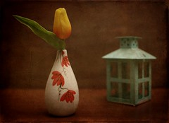 Vase with Flower (N.the.Kudzu) Tags: tabletop stilllife vase flower small lantern canoneosm 7artisans25mmf18 photoscape texture