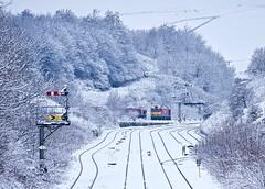 Peak Forest Derbyshire 30th January 2019 (loose_grip_99) Tags: peak dale forest derbyshire railway railroad rail train transportation snow winter diesel engine locomotive class66 class 60 sidings trains railways january 2019