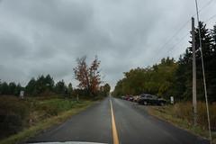 Keen People to Walk in the Rain (Jocey K) Tags: sonydscrx100m6 triptocanada ontario canada autumn autumncolour tree cars people road ajax toronto