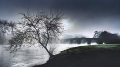 Pontevea (Noel F.) Tags: sony a7r a7rii ii fe 24 14 gm pontevea teo estrada rio ulla galiza galicia