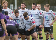 Preston Grasshoppers 29 - 0 Leicester Lions February 09, 2019 38354.jpg (Mick Craig) Tags: action hoppers sportsman fulwood rugbyunion maul preston grasshoppers ruck rfu lineout lightfootgreen lancashire agp sport leicesterlions scrum rugby uk rugger