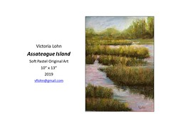 """Assateague Island • <a style=""""font-size:0.8em;"""" href=""""https://www.flickr.com/photos/124378531@N04/46380890404/"""" target=""""_blank"""">View on Flickr</a>"""