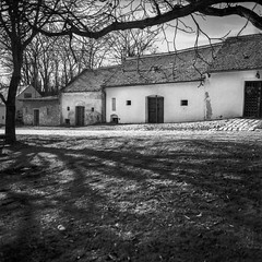 Pillichsdorf, Kellergasse im ersten Frühlingslicht, cellar lane in the light of early spring (fritz polesny) Tags: mamiyac330 hp5 sekor 55mm weinviertel blackwhite atomal