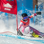 Dreadnaught FIS Speed - Peak US Athlete