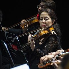 Violipizta (Guillermo Relaño) Tags: maxbruch camerata musicalis teatro nuevoapolo madrid guillermorelaño nikon d90 concierto número1 n1 violín violin especial ¿porquéesespecial orquesta orchestra
