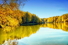 Sunny morning (prokhorov.victor) Tags: осень природа пейзаж озеро вода лес отражение небо