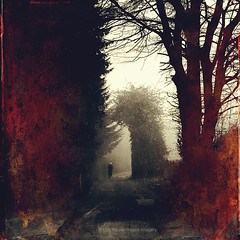 step by step 19 (Dyrk.Wyst) Tags: atmosphere composition conceptual creativephotography dreamy fineart germany haze iphoneography mist oneperson people silhouette spring stimmung vintage trees road backlight red texture