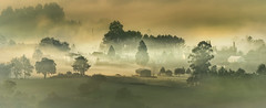 Vedra (Noel F.) Tags: sony a7r a7rii ii fe 100400 gm 14 tc vedra boqueixon galiza galicia neboa fog mist sunrise mencer
