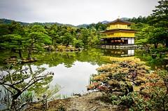 Golden Pavilion again (kimbar/Thanks for 4 million views!) Tags: japan kinkakuji kyoto lake reflection temple templeofthegoldenpavilion trees
