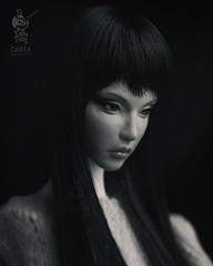Do Dolls Dream - Narrative Line - CARTA (Do Dolls Dream) Tags: dodollsdream do dolls dream ball jointed doll bjd