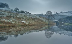 From Lock To Lock...(1) (shushphoto) Tags: landscape water winter calderdale westyorkshire pennines reflection todmorden