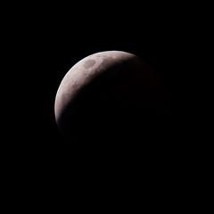 Moon (22:33) (ruifo) Tags: nikon d810 nikkor afs 200500mm f56e ed vr moon lua luna eclipse 20 21 january janeiro enero 2019 full llena cheia noite night noche astro astrophotography astrofotografia astrofotografía solar system sky ceu céu cielo earth penunbra umbra lunar mexico city cdmx ciudad méxico