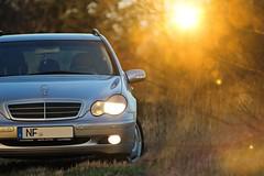 Lights (xflensburger) Tags: schleswigholstein mercedes benz auto wald nature nordfriesland evening sun forest uphusum canon chillen abendstimmung country