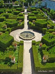 Jardim do Paço Episcopal, Castelo Branco 04 (Sofia Barão) Tags: portugal beira baixa jardim garden