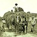 Grand Pop with a load of hay at the gate, Garrison, N.Y., 1901. Grace and Willie atop the load; Ferdie beside the wagon