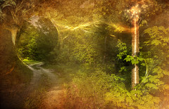 Green Vision Trail lil (jsbanks42) Tags: green fantasy trail fractal wallpaper energy vermont