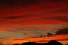 Sunset 1 31 19 #45 (Az Skies Photography) Tags: sun sunset set dusk twilight nightfall sky skyline skyscape cloud clouds red orange salmon yellow gold golden black rio rico arizona az rioricoaz riorico arizonasky arizonaskyline arizonaskyscape arizonasunset january 31 2019 january312019 13119 1312019 canon eos 80d canoneos80d eos80d canon80d